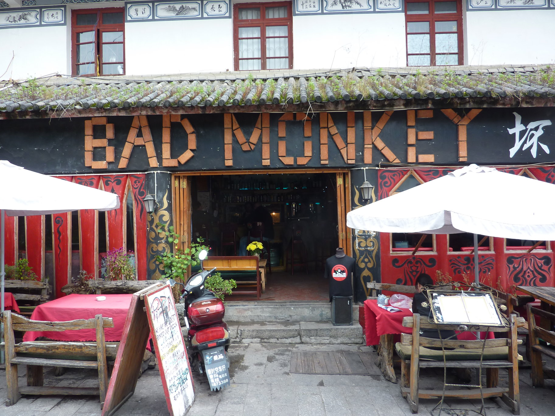 Bad Monkey Dali